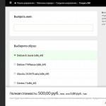 Панель управления servers.ru